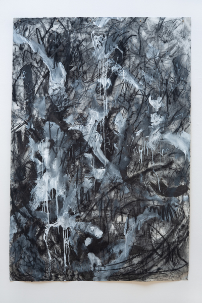 Asemic Furry 59, 44x66, charcoal, gesso, graphite on paper
